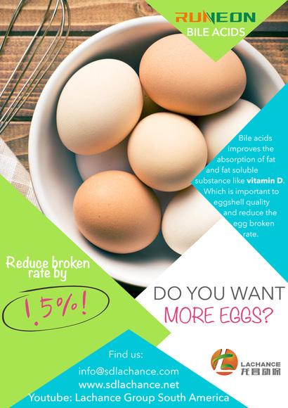 ¡Los ácidos biliares reducen la tasa de rotura de huevos en un 1,5%! - Casos clínicos