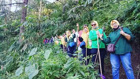 WA 0813-8898-0309 Trekking di Gadog, puncak, Bogor - Clinical issues