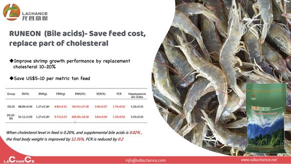 La mejor solución para ahorrar el costo de alimentación del cultivo de camarón. - Casos clínicos