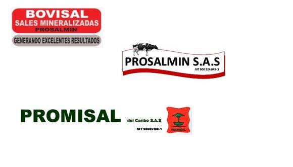BOVISAL - MELASAL - PROMISAL - SALCOL - Eventos