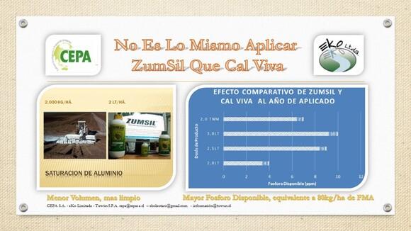 Experiencia uso Zumsil en Araucanía Chile - Agroecología