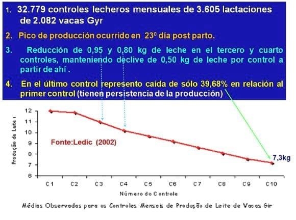 Curva de Lactação - Gir Leiteiro - Gir Leiteiro