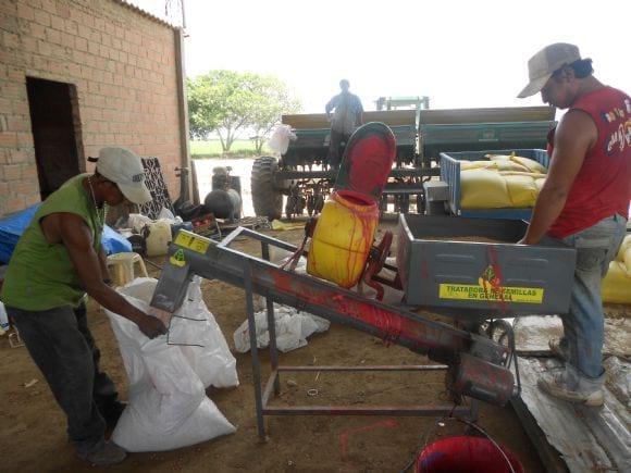 control de enfermedades - Evaluación cultivos de soya Santa Cruz Bolivia