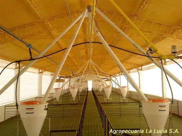 Agropecuaria La Lucia, Alberti Bs.As. Nave Destete-Recría - Nuevo Poblamiento