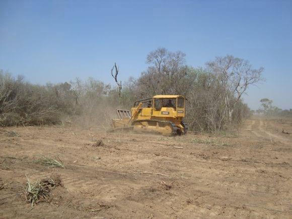 desmonte - implantacion de propiedad ganadera