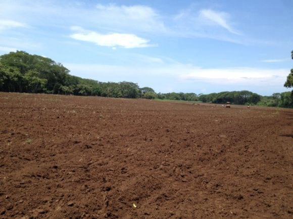 Preparaci n de la tierra ref 19269 - Preparacion de la tierra para sembrar ...