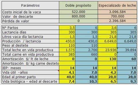 Costo de una vaca - Engormix