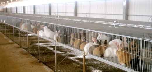 una granja integral: