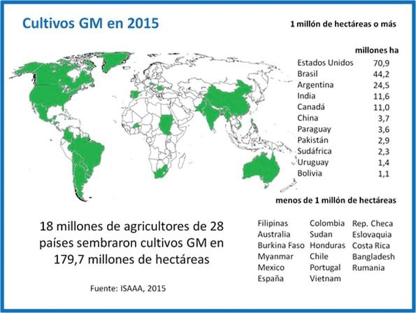 Situaci n global de los cultivos gm informe 2015 for Que son cultivos asociados