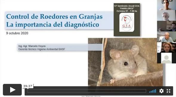 Argentina - Pollos parrilleros: Reunión anual del Grupo de Trabajo Avícola - Image 3