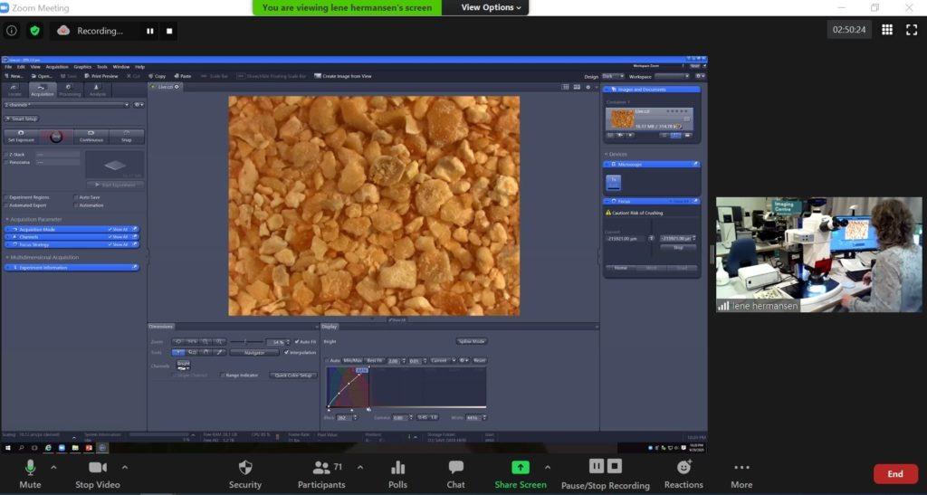EE.UU. - La microscopía ayuda a las fábricas de piensos con el control de calidad - Image 1