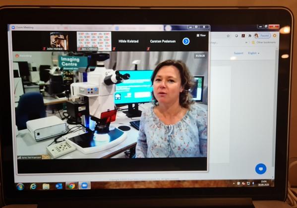 EE.UU. - La microscopía ayuda a las fábricas de piensos con el control de calidad - Image 4