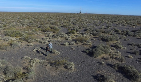 Argentina - Biodiversidad del suelo: base para la producción sostenible - Image 3