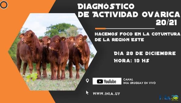 Uruguay - Jornadas de Divulgación Diagnóstico de actividad ovárica - Image 1