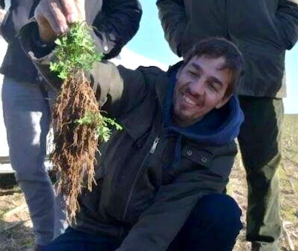 Argentina - Esclarecen el rol de las raíces en la salud de suelos y ecosistemas - Image 1