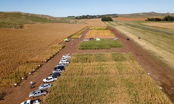 Argentina - Tecnología para maíz y soja en Expo Nutrien 2021 - Image 1