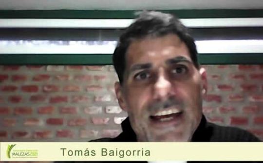 Argentina - Malezas 2021: Claves del manejo de cultivos de cobertura para su control - Image 1