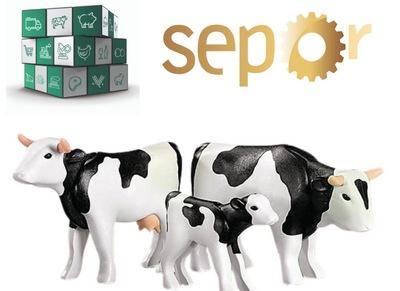 España - VII Jornada Nacional de Vacuno de Carne en SEPOR 2021 - Image 1